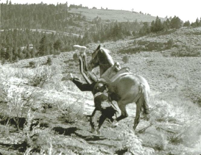 Bob Hoy Stunt photo